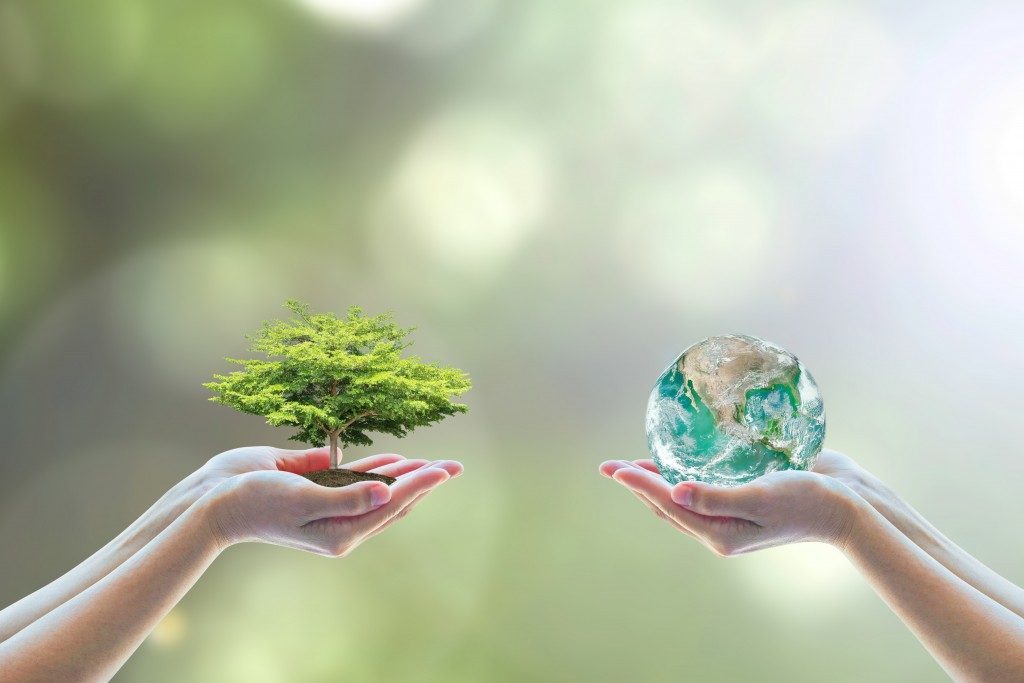 Two people holding a tree and a model of the earth showing nature and environment concept