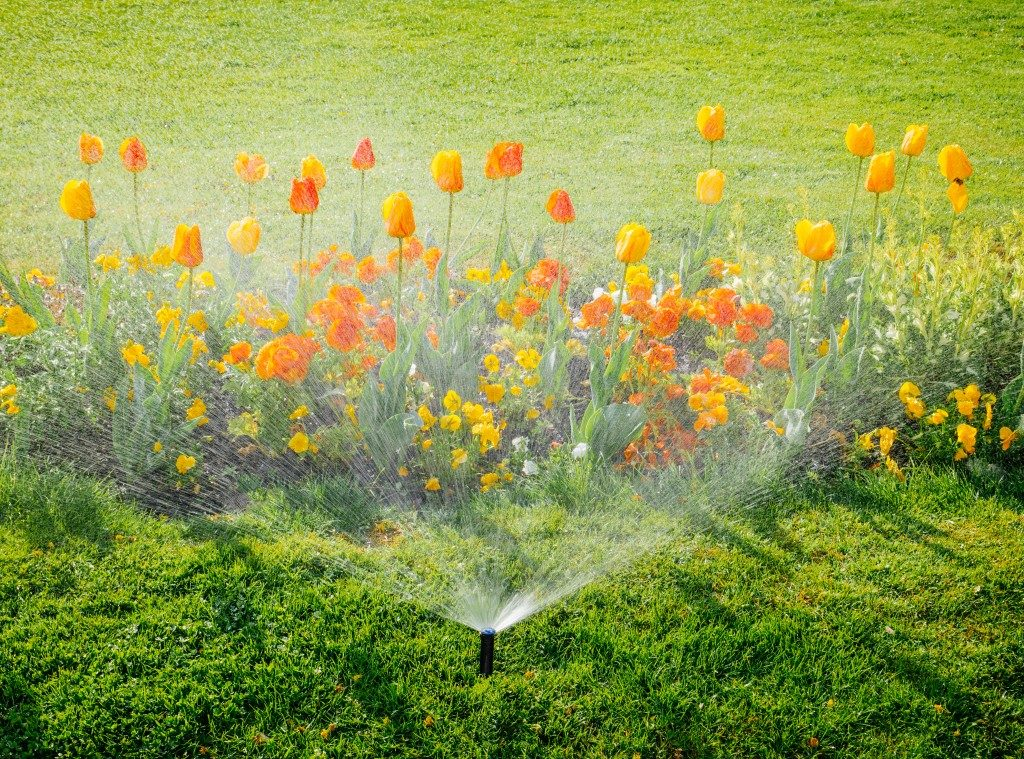flowers being watered