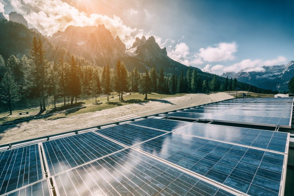 solar power plant surrounded by forest