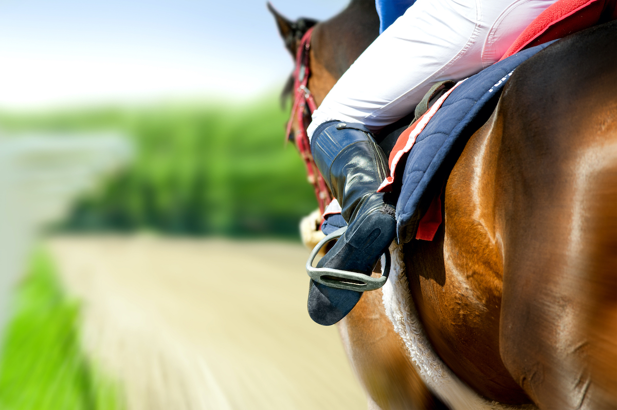 equestrian riding a horse